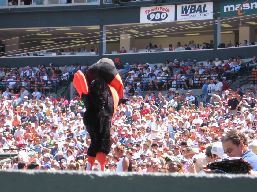 The Bird in Baltimore