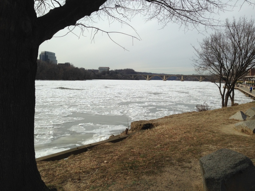 The Potomac, looking toward the Key Bridge, Noon, January 8, 2014