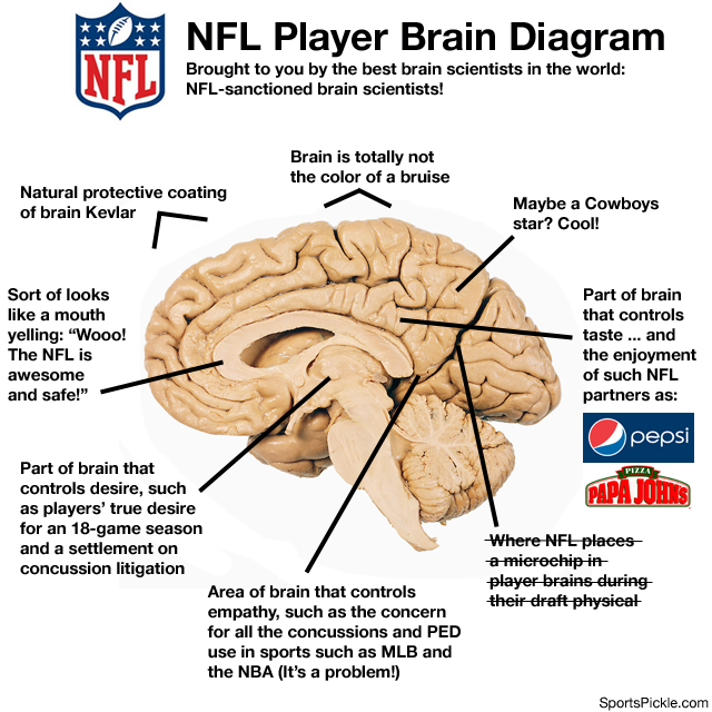 NFL Brain Diagram