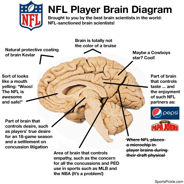 NFL Brain Diagram via SportsPickle.com