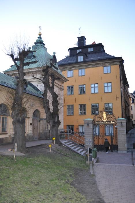 German Church Yard March 2014