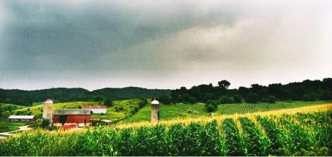 Taliesin Fields
