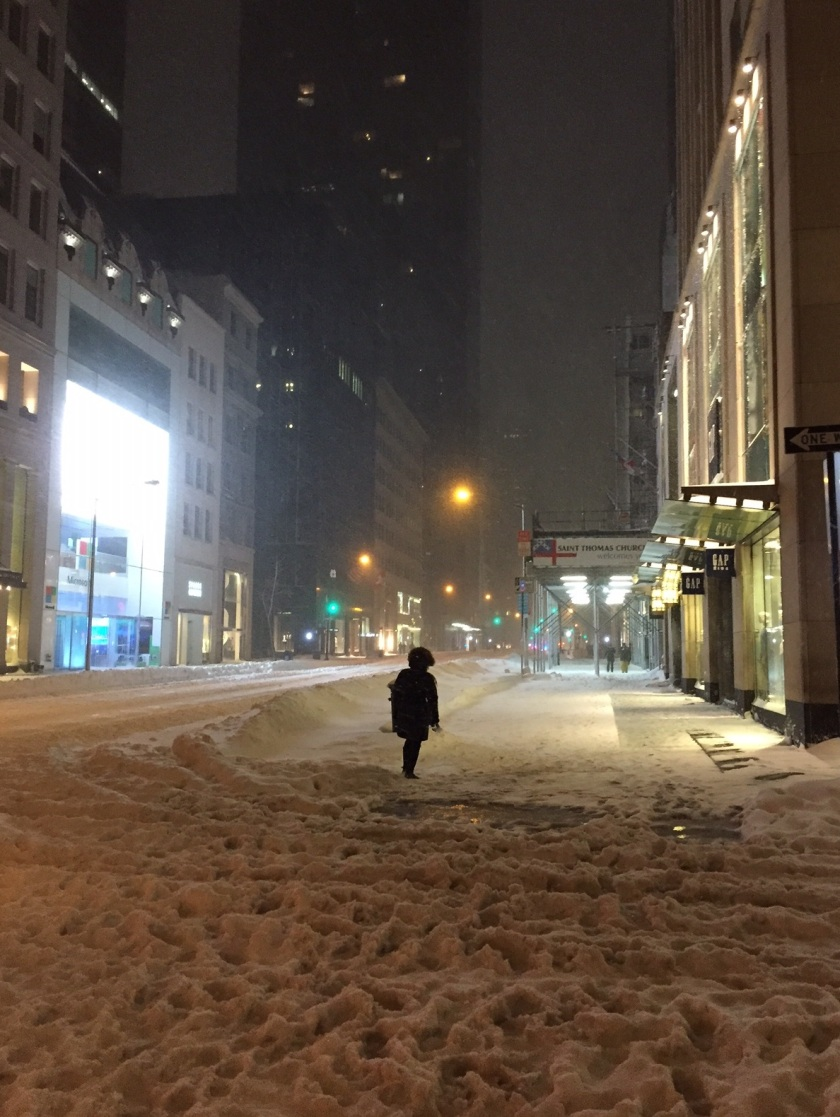5th Avenue in NYC during the blizzard 01 23 16