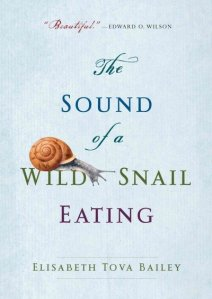 Soiund of a Wild Snail Eating