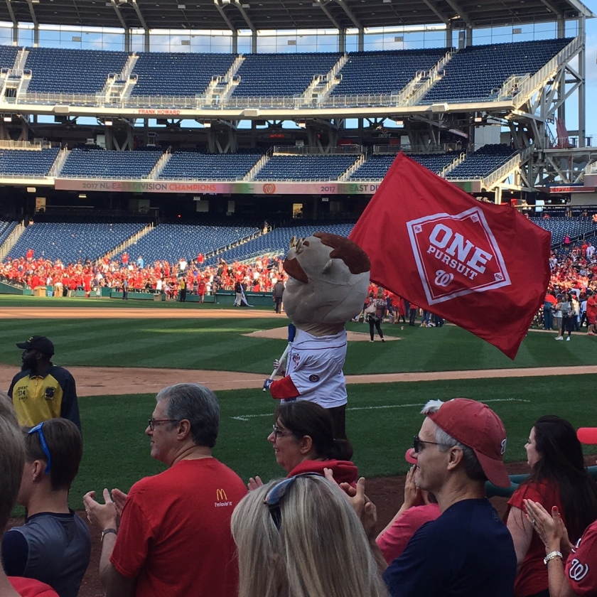 Teddy Celebrates Nats 2017 East Division Title by Sarah Heffern 09 10 17