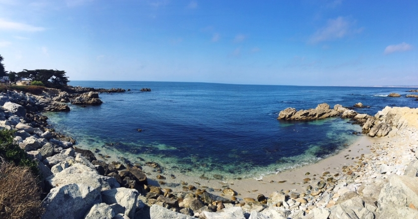 Pacific Grove Panorama