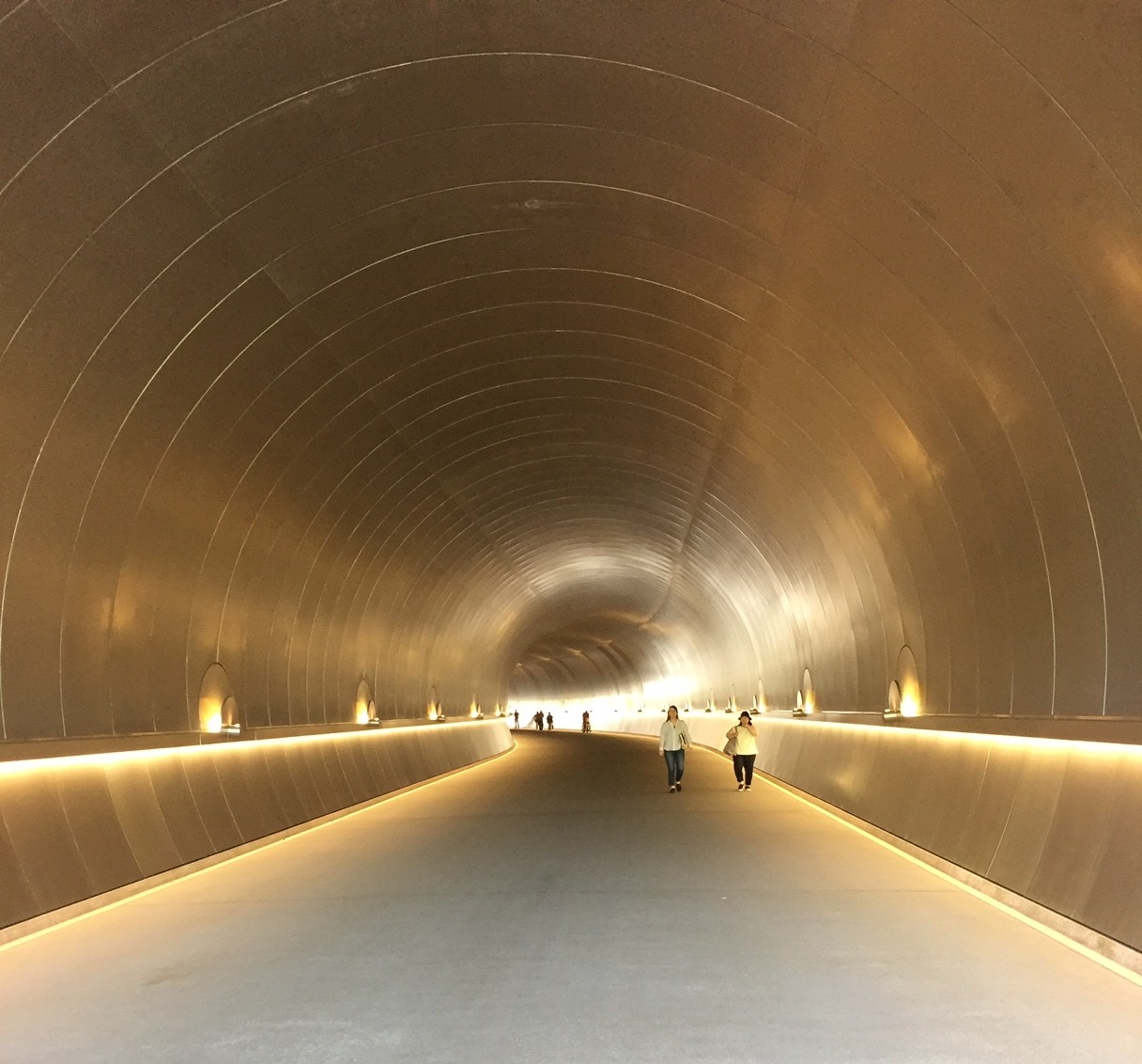 Tunnel to Miho Museum