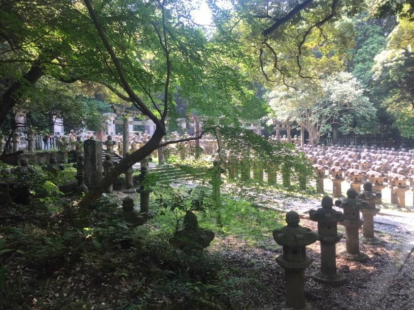 Lanterns at Toko-ji
