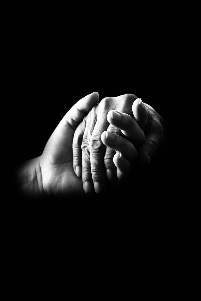 Hands (Image by James Chan from Pixabay)
