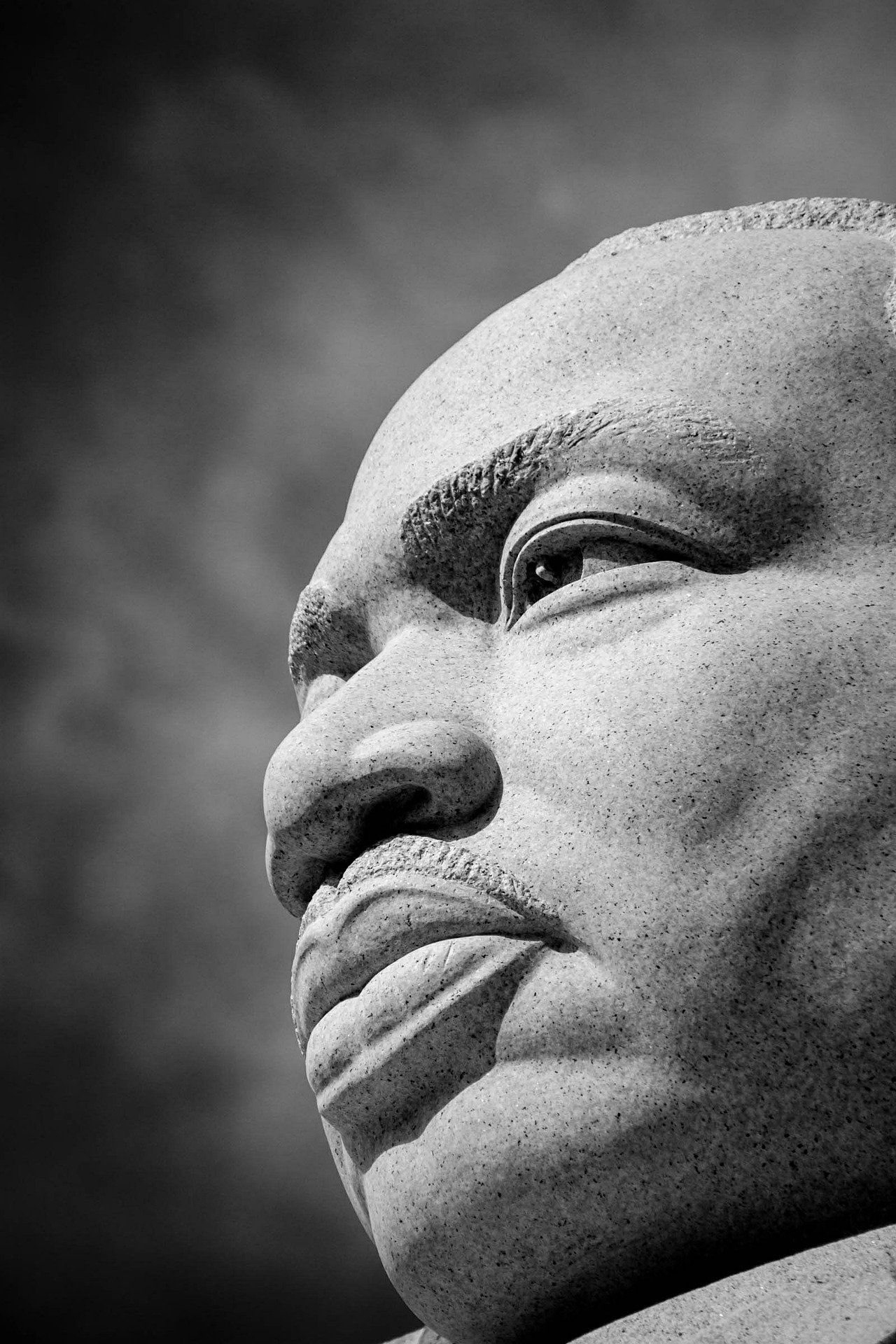 martin-luther-king monument detail (Image by LuAnn Hunt from Pixabay)